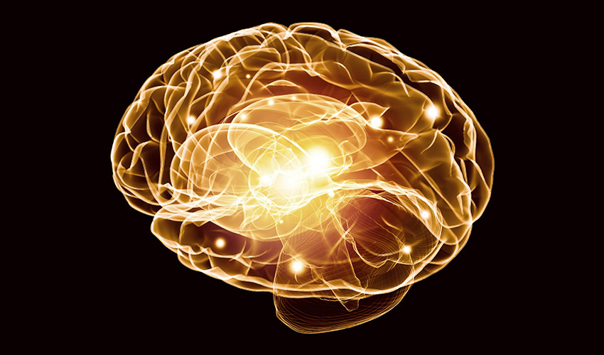 Cos'è il neurobranding: definizione e applicazione