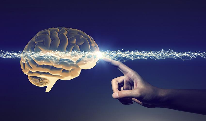 Cos'è la neuroestetica: definizione e applicazione
