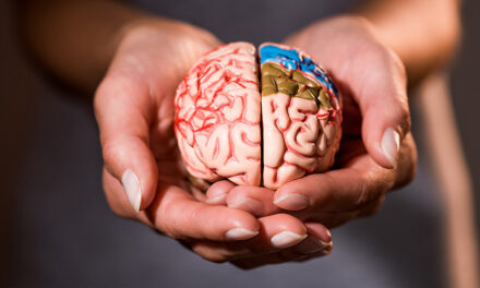 Cognitive miser: il cervello è un avaro cognitivo